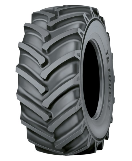 NOKIAN TR FOREST FS 16.9-34  146 A8
